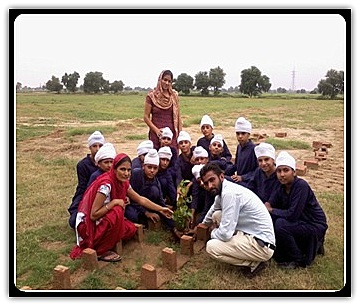 """In village uddat saidewala, little flowers plant """"green bouquets of"""